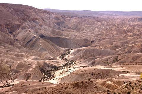 ถิ่นกันดารเนเกบ ภาพจาก kumah.org