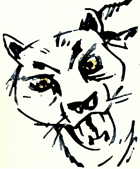 lion2